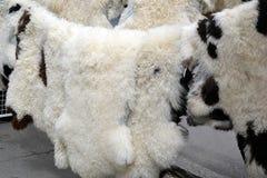 Sheep fur. Natural sheep and lamb fur, sheepskin on display at the market Royalty Free Stock Images