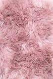 Sheep fur pink sheepskin rug background. Sheep fur. Pink sheepskin rug background. Wool texture royalty free stock photos