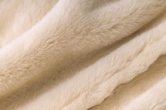 Sheep fur texture Stock Photo