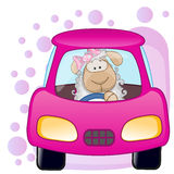 Sheep girl in a car Royalty Free Stock Photo