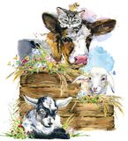 Sheep. goat. kitten. calf. chick. watercolor farms animal collection.