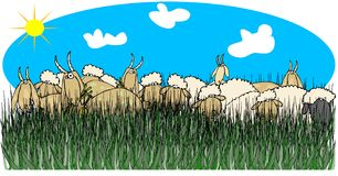 Sheep & goats in tall grass. This illustration depicts some sheep and goats standing and eating in tall grass Royalty Free Stock Photos
