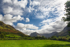 Sheep graze near Buttermere Lake District Royalty Free Stock Photography