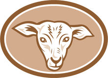 Sheep Head Oval Cartoon Stock Images