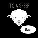 Sheep Head saying baa. Flat style monochrome Royalty Free Stock Photography