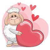 Sheep with heart Stock Photography