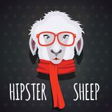 Sheep hipster dressed in red scarf Royalty Free Stock Photo