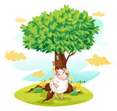 A sheep holding an empty signboard beside a treehouse Royalty Free Stock Images