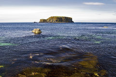 Sheep Island from the sea weed shoreline, Antrim Coast. Carrick a Rede, Antrim Coast Northern Ireland. The Antrim Coast is one of the most popular tourist royalty free stock photo