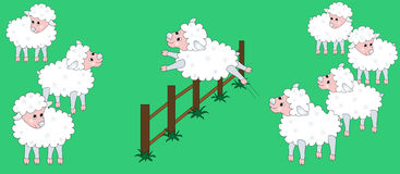Sheep jumping Royalty Free Stock Image