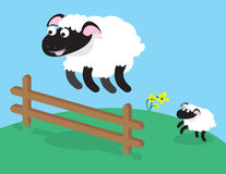 Sheep Jumping Fence Royalty Free Stock Image