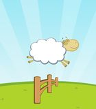 Sheep jumping fence. Happy sheep jumping a fence Royalty Free Stock Photo