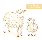 Sheep and lamb. Cute animals family with mom and baby. Vector illustration Stock Images