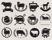 Sheep and lamb labels set. Vector Stock Image