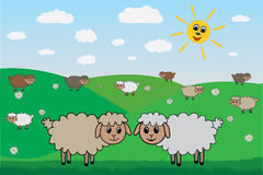 Sheep on lawn, vector Royalty Free Stock Photo