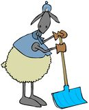 Sheep leaning on a snow shovel Stock Images