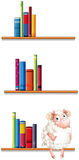 A sheep in the library Stock Images