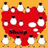 Sheep love Royalty Free Stock Photography