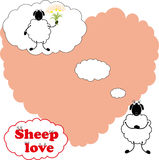 Sheep love Royalty Free Stock Photos