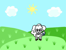 Sheep on the meadow. A funny sheep chewing flower on the meadow Royalty Free Stock Photos