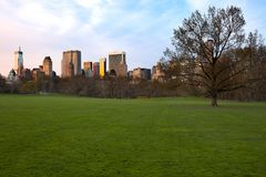 Sheep Meadow at Central Park and Midtown skyline Stock Photography