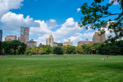 The Sheep Meadow at Central Park in New York City Stock Photo