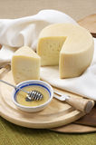 Sheep milk cheese Royalty Free Stock Photo