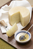Sheep milk cheese Royalty Free Stock Image