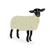 Sheep over white background. Vector of a sheep over white background Stock Photography