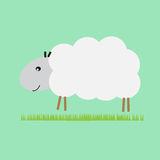 Sheep in the pasture. Single sheep in the pasture Royalty Free Stock Photos