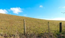 Sheep pasture Stock Photo