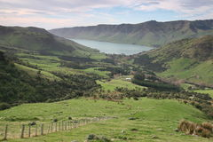 Sheep pastures on the Banks Peninsula, New Zealand Royalty Free Stock Image