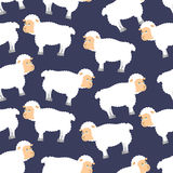 Sheep pattern. ewe ornament. Flock of sheeps. Farm animal backgr Royalty Free Stock Photography
