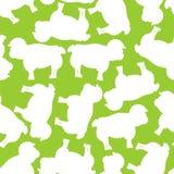 Sheep pattern. ewe ornament. Flock of sheeps. Farm animal backgr Royalty Free Stock Images