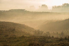 Sheep pen at dawn. In Bukovina, (Bucovina), Moldavia (Moldova Stock Photography