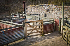 Sheep pen Royalty Free Stock Photography