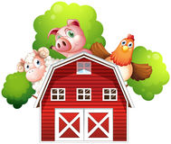A sheep, a pig and a chicken hiding at the back of a barn Stock Photos