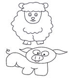 Sheep and pig Stock Images