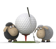 Sheep play golf Royalty Free Stock Image