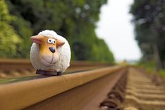 Sheep on rails Stock Photography