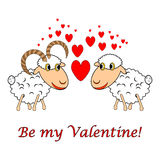 A sheep and a ram in love with text Royalty Free Stock Image