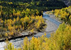 Sheep river in a beautiful shape Stock Photos