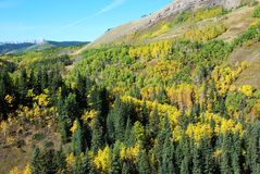 Sheep River Valley in Autumn Stock Photos