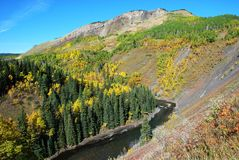 Sheep River Valley in Autumn Royalty Free Stock Photo
