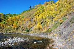 Sheep River Valley in Autumn Royalty Free Stock Photography