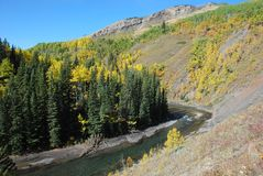 Sheep River Valley in Autumn Stock Photography