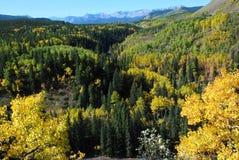 Sheep River Valley in Autumn Stock Photos