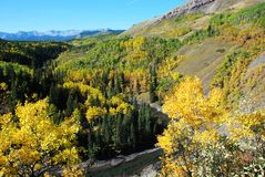 Sheep River Valley in Autumn Stock Images