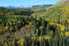 Sheep River Valley in September Royalty Free Stock Images