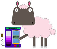 Sheep's charger Royalty Free Stock Images